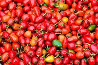 Red round chillis