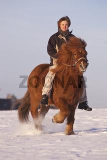 Pferd und Reite im Schnee