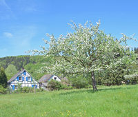 Springtime in Bergisches Land at Solingen Fruit Trail,Germany