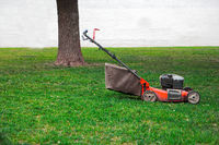 Lawnmower on grass in the garden, tree and white wall on background, a lot of space for text