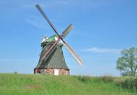D--MVP--Windmühle von Stowe am Salzhaff 2.jpg