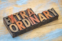extraordinary word in wood type