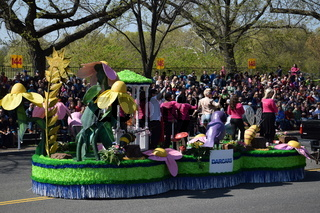 The 2016 National Cherry Blossom Parade in Washington DC