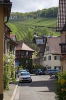 Historic town of Staufen with vineyard