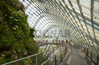 Gardens by the Bay Cloud Forest Dome in Singapore