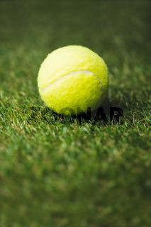 Close up of tennis ball