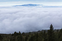 Cloud inversion layer