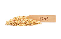 Hafer - Oat on plate