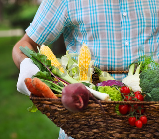 Basket filled fresh vegetables in hands of a man