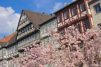 Hanover - Old Town in spring