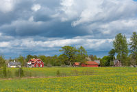 Farm in the Swedish countryside