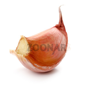 One clove of garlic on a white background
