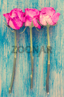Old roses on wooden table