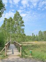 Nature Reserve Ohligser Heide near Solingen in Bergisches Land,Germany