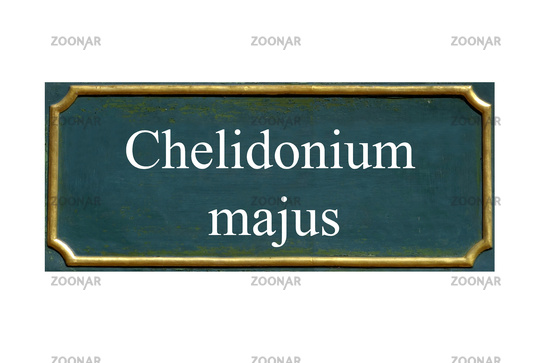 shield chelidonium majus