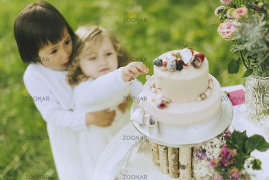 wedding cake nibble cake