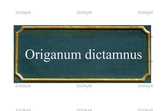 shield origanum dictamnus