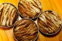 smoked sprats canned in a tin
