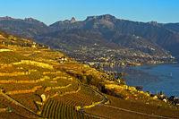 Herbst in der Waadtländer Riviera am Genfersee
