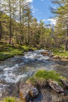 Mountain stream in South Tyrol