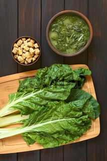 Chard Leaves and Chard Soup