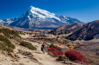 Traveler on mountain bike cycling trail in mountains