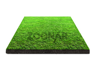 square   green grass