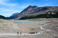 Wanderweg zum Athabasca Gletscher