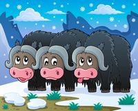 Three muskoxen theme image 2 - picture illustration.