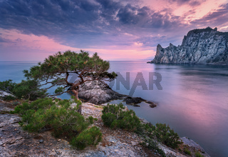 Beautiful summer sunset at the sea with mountains, stones, trees