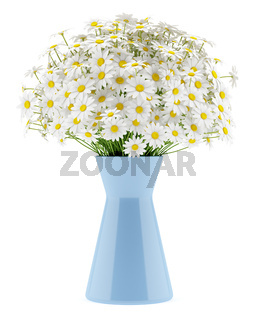daisies in blue vase isolated on white background