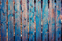 Old wooden fence painted in blue