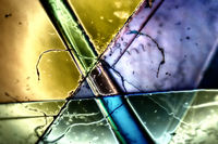 Light Graphics: Microphoto of translucent structures in polarized light