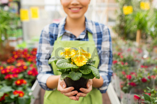close up of woman holding flowers in greenhouse
