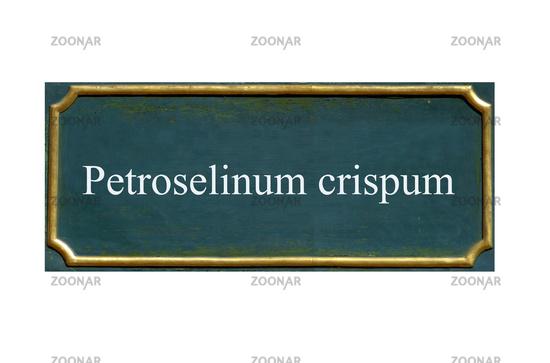 shield petroselinum crispum