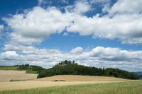Getreidefelder im Hegau