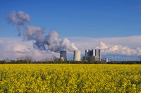 Kraftwerk mit Rapsfeld - power plant and rape field