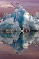Foggy morning at the glacier lagoon