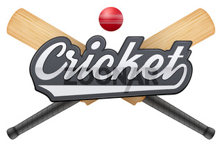 Cricket leather ball and wooden bats.