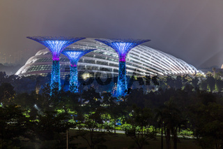 Supertree Grove and Flower Dome in Gardens by the Bay