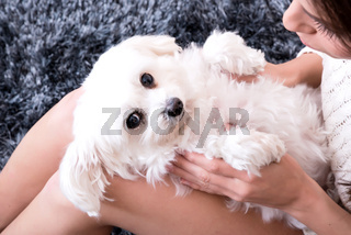 Young beautiful woman hugging her puppy