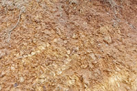 Soil background texture