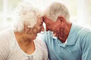 Cute senior couple hugging