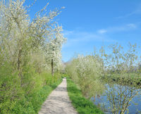 Springtime at River Niers near Wachtendonk,Rhineland,Germany