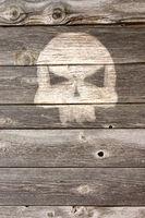 totenschädel auf bretterwand