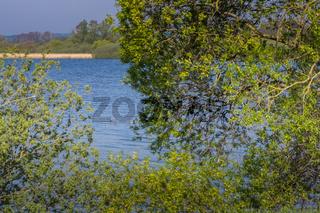 Landschaft am Dümmer See-114