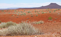 landscape of Namibia, Palmwag concession