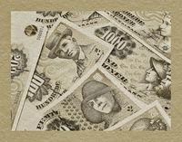 viele dänische Kronen-Banknoten | a lot of Danish krones