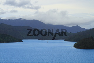 Boat sailing in a beautiful sea of Marlborough Sounds