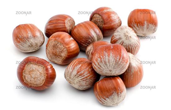 Hazelnuts isolated on white